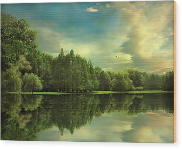 Summer Reflections Wood Print by Jessica Jenney