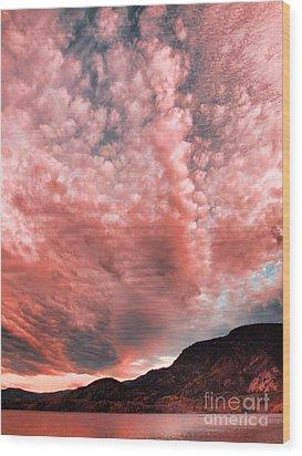 Summer Skies Wood Print by Tara Turner