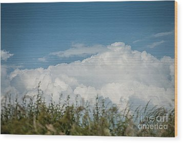 Wood Print featuring the photograph Summer Sky by Jan Bickerton