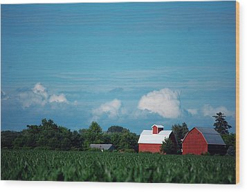 Summer Sky Summer Farm Wood Print by Jame Hayes