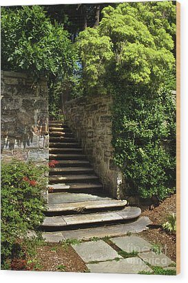 Wood Print featuring the photograph Summer Steps by Mark Miller