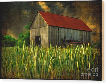 Summer Storm Wood Print by Lois Bryan