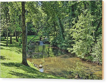 Wood Print featuring the photograph Summer Stream by Cricket Hackmann