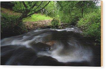 Wood Print featuring the photograph Summer Stream by Tim Nichols