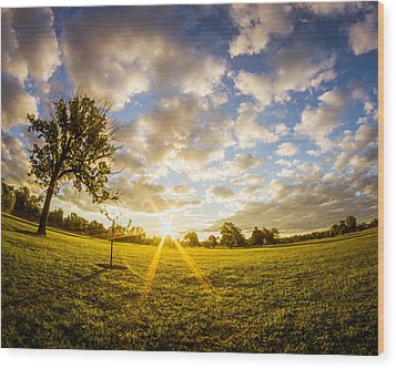 Wood Print featuring the photograph Summer Sunrise Across Delware Park Meadow by Chris Bordeleau