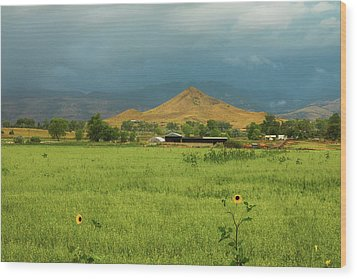 Wood Print featuring the photograph Summer View Of  Hay Stack Mountain by James BO Insogna