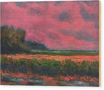Summer Wetlands - Distant Haze  Wood Print