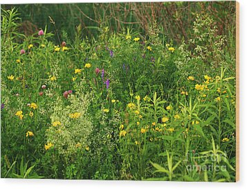 Wood Print featuring the photograph Summer Wildflowers by Smilin Eyes  Treasures