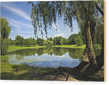 Summertime At Otsiningo Park Wood Print by Christina Rollo
