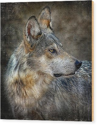 Summertime Coated Wolf Wood Print by Elaine Malott