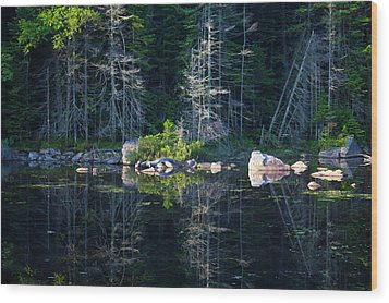 Summertime Reflections On The Lake Wood Print
