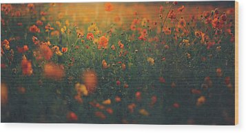 Wood Print featuring the photograph Summertime by Shane Holsclaw