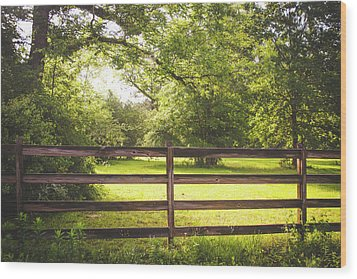 Wood Print featuring the photograph Summertime Sunshine by Shelby Young