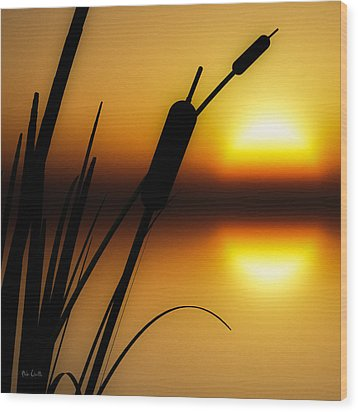 Summertime Whispers  Wood Print by Bob Orsillo