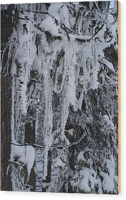 Sumpter Winter Wood Print by Caprice Scott