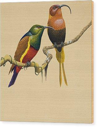 Sun Birds Wood Print by English School