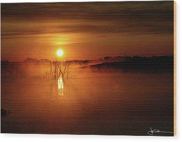 Sun Birth Wood Print