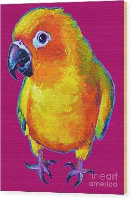 Sun Conure Parrot Wood Print