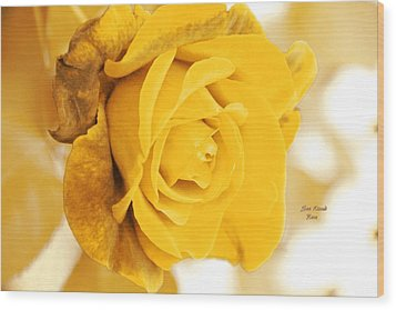 Wood Print featuring the photograph Sun Kissed Rose by Athala Carole Bruckner