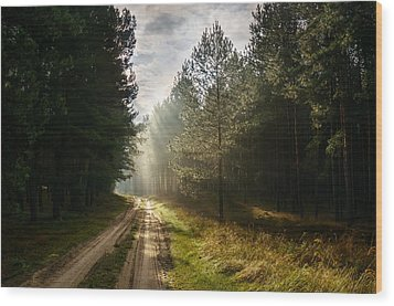 Sun Light At Pine Forest Wood Print
