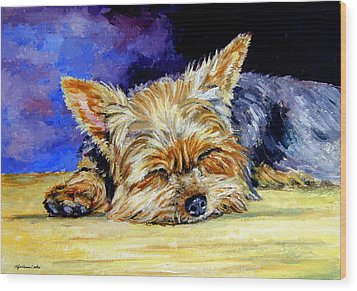 Sun Light Snoozer - Yorkshire Terrier Wood Print by Lyn Cook