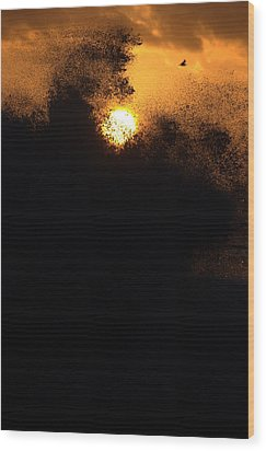 Sun Monster Wood Print by Brad Scott