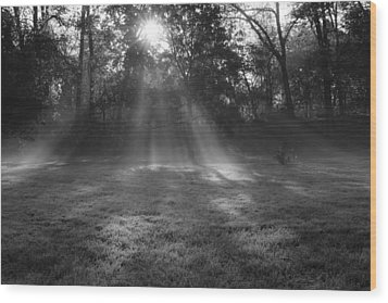 Sun Rays Though Fog Wood Print by Sven Brogren