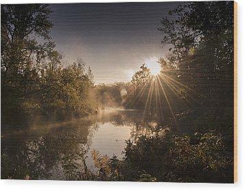 Sunbeams  Wood Print by Annette Berglund