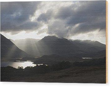 Sunbeams In Glen Affric Wood Print by Sue Arber