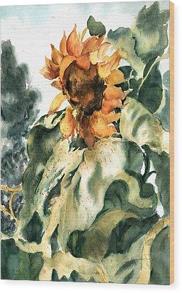 Sundancer Wood Print by Barbara Jung
