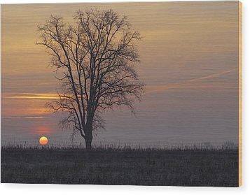Sunday At Dawn Wood Print