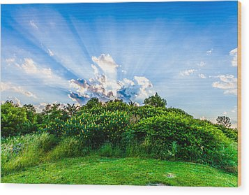 Wood Print featuring the photograph Sundown by Anthony Rego