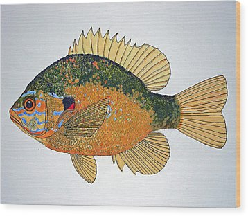 Sunfish South Usa Wood Print by Don Seago