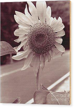 Wood Print featuring the photograph Sunflower 1 by Mukta Gupta