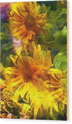 Sunflower 6 Wood Print