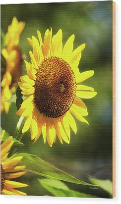 Wood Print featuring the photograph Sunflower Field by Christina Rollo