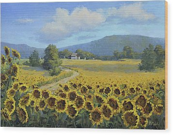 Sunflower Fields Wood Print