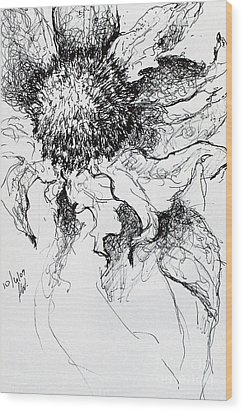 Sunflower In Pen And Ink Wood Print by Amy Williams