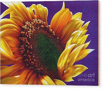 Sunflower Wood Print by Jurek Zamoyski