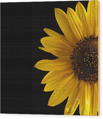 Sunflower Number 3 Wood Print by Steve Gadomski