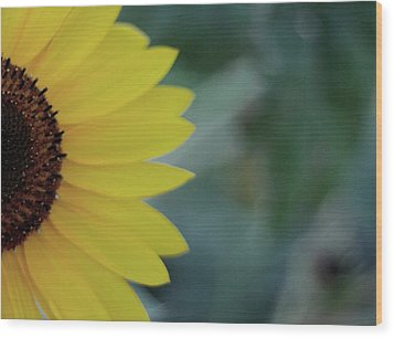 Sunflower Peeking.. Wood Print