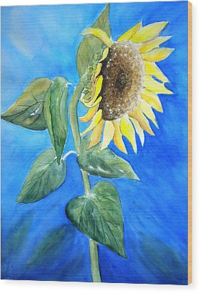 Sunflower  Wood Print by Sandy Fisher