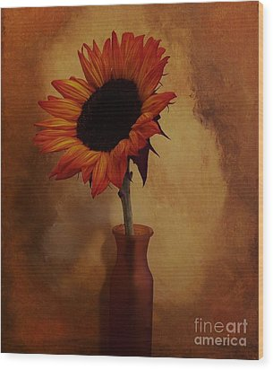Sunflower Seed Maker Wood Print by Marsha Heiken