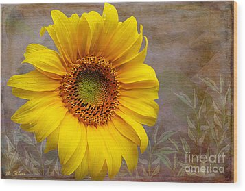 Sunflower Serenade Wood Print by Nina Silver