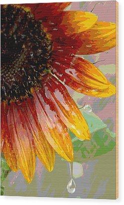 Sunflower Shower Wood Print by Lori Mellen-Pagliaro