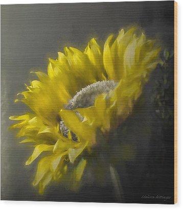 Sunflower Slumber Wood Print