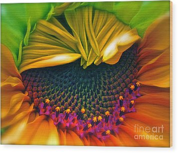 Sunflower Smoothie Wood Print by Gwyn Newcombe
