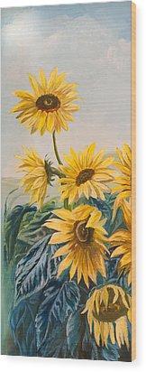 Sunflowers 1 Wood Print by Jana Goode