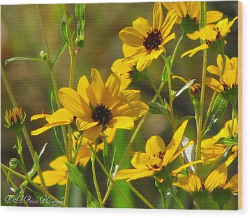Wood Print featuring the photograph Sunflowers Along The Trail by Barbara Bowen