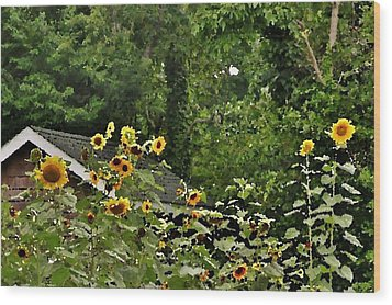 Sunflowers At The Good Earth Market Wood Print